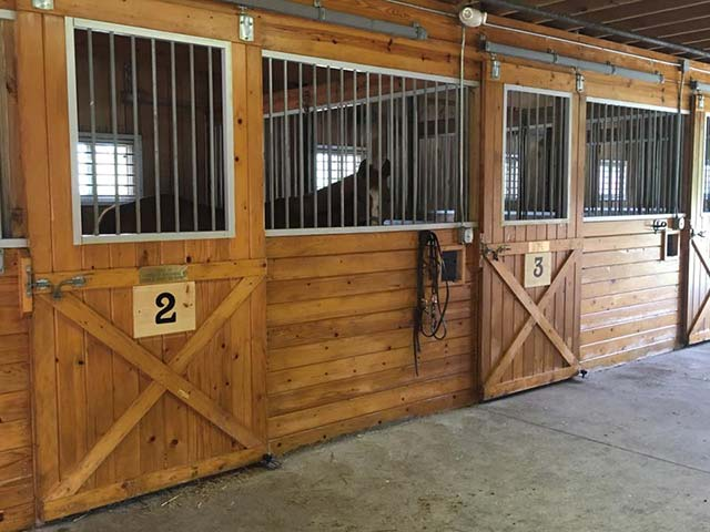 Horse stables at Hiram House Camp used for horseback riding lessons