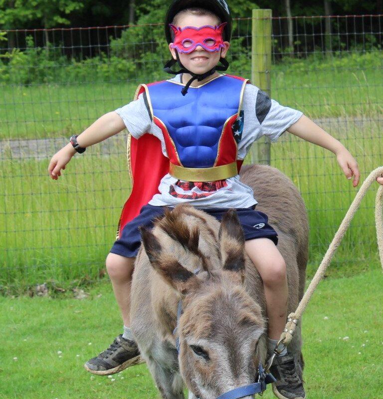 Kid on donkey
